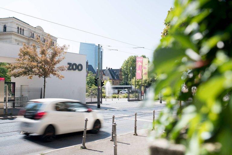 zoo frankfurt preise